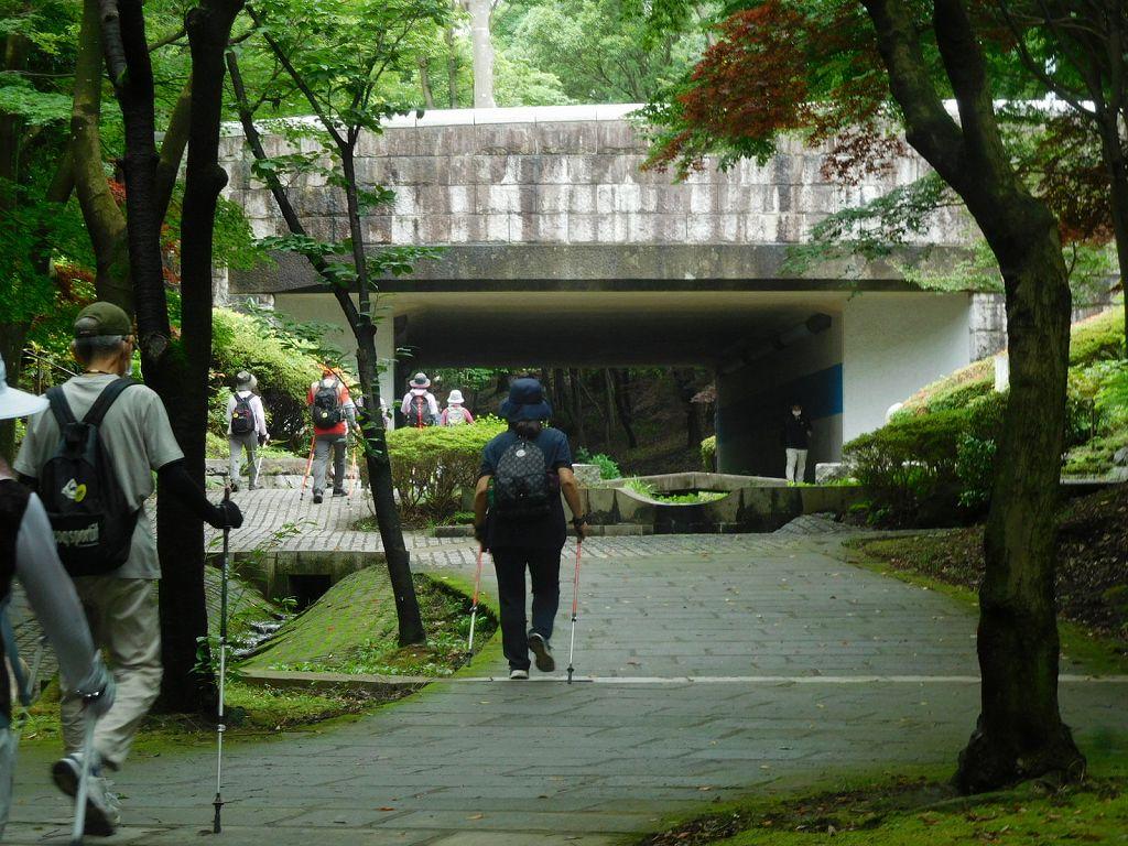区役所通りの橋を潜って歩を進めます