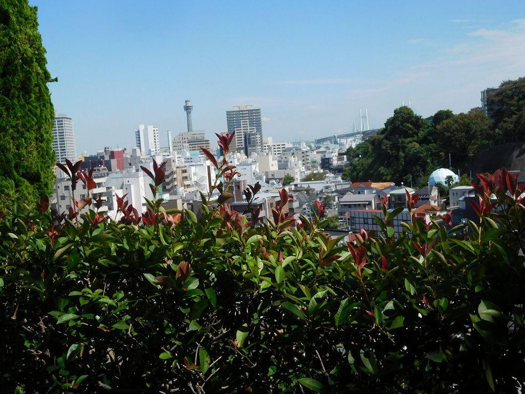 庭園から港方面の眺望