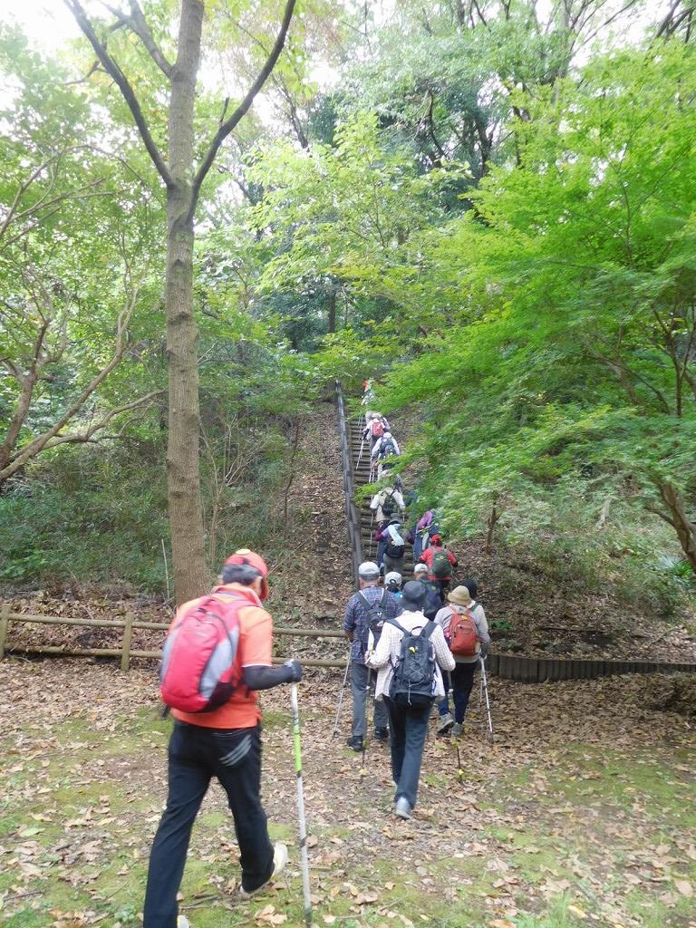 北八朔公園に入り一班は園内樹林へ