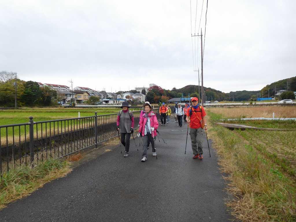 鶴見川への農道を歩く