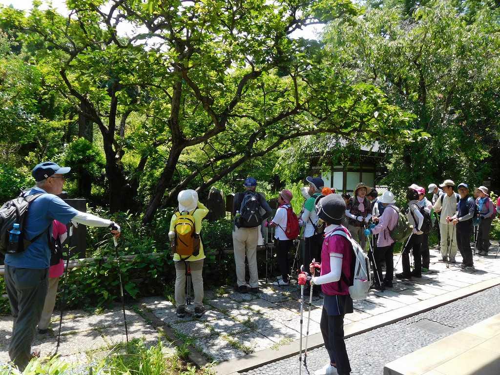 王禅寺境内で散策