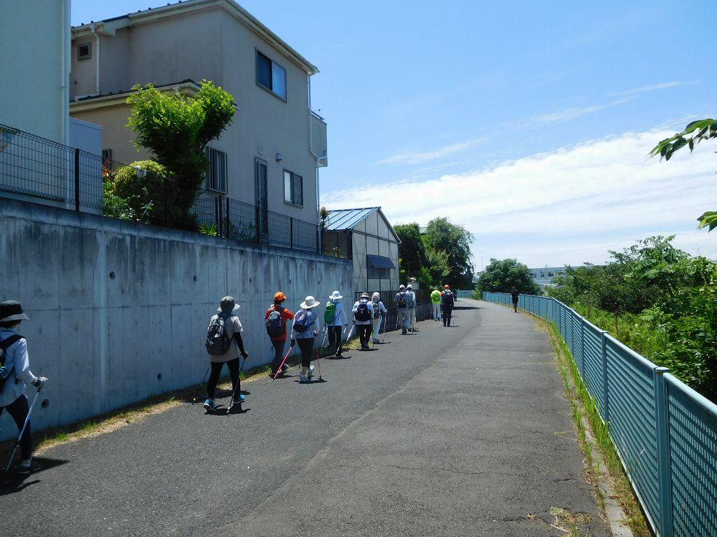 鶴見川を更に下ります