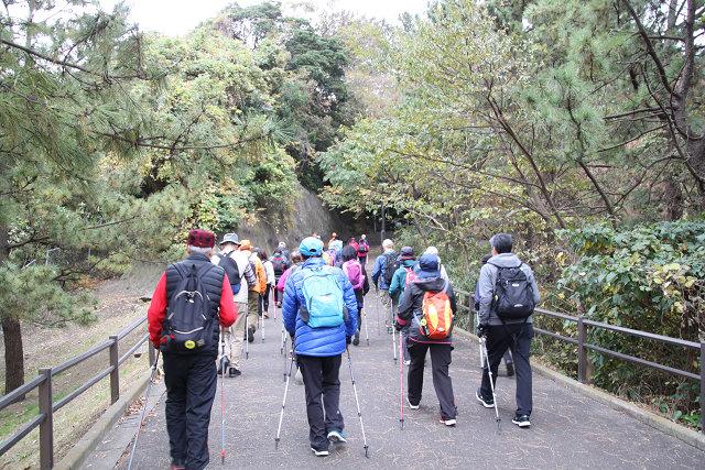 240段を登る階段組と分かれ野島公園展望台を目指す平地組