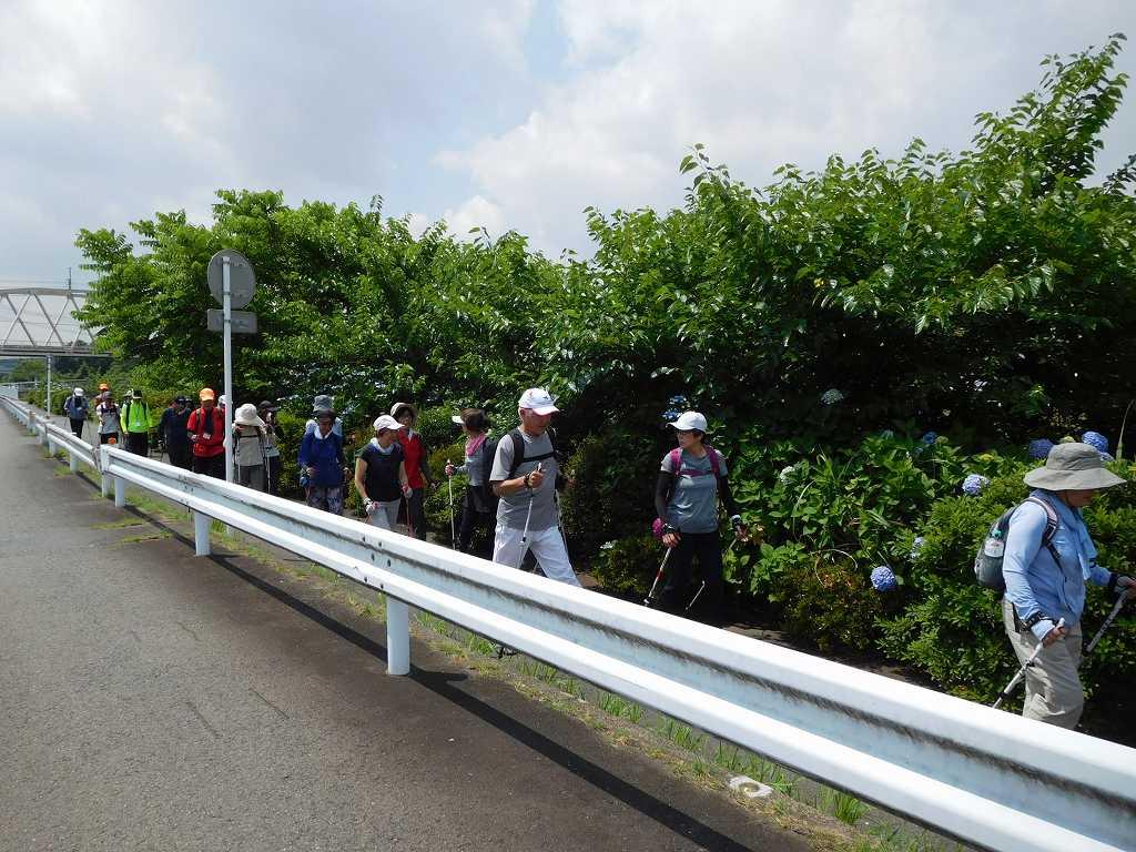 鶴見川に出て市が尾高校を目指す
