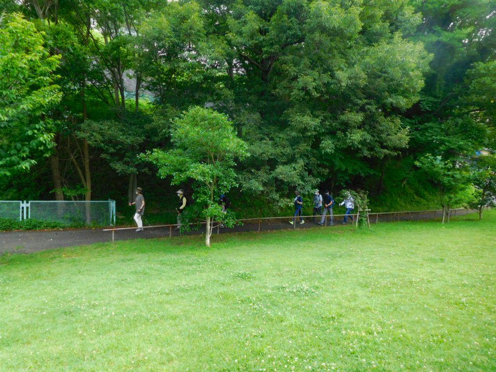 北八朔公園内の歩道を歩く2班(体験参加の2名の姿も見えます)