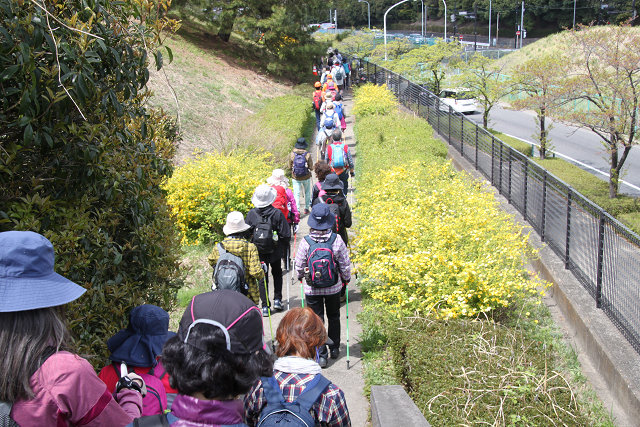 東京国際ゴルフ倶楽部横の細い道を歩く
