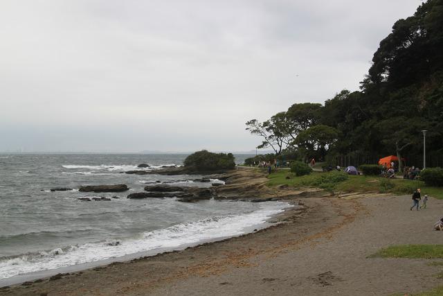 海岸線も綺麗ですね