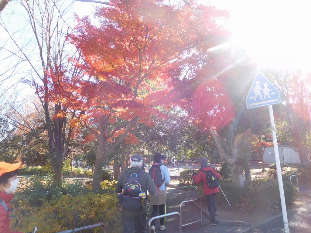 泉田向公園入口の紅葉