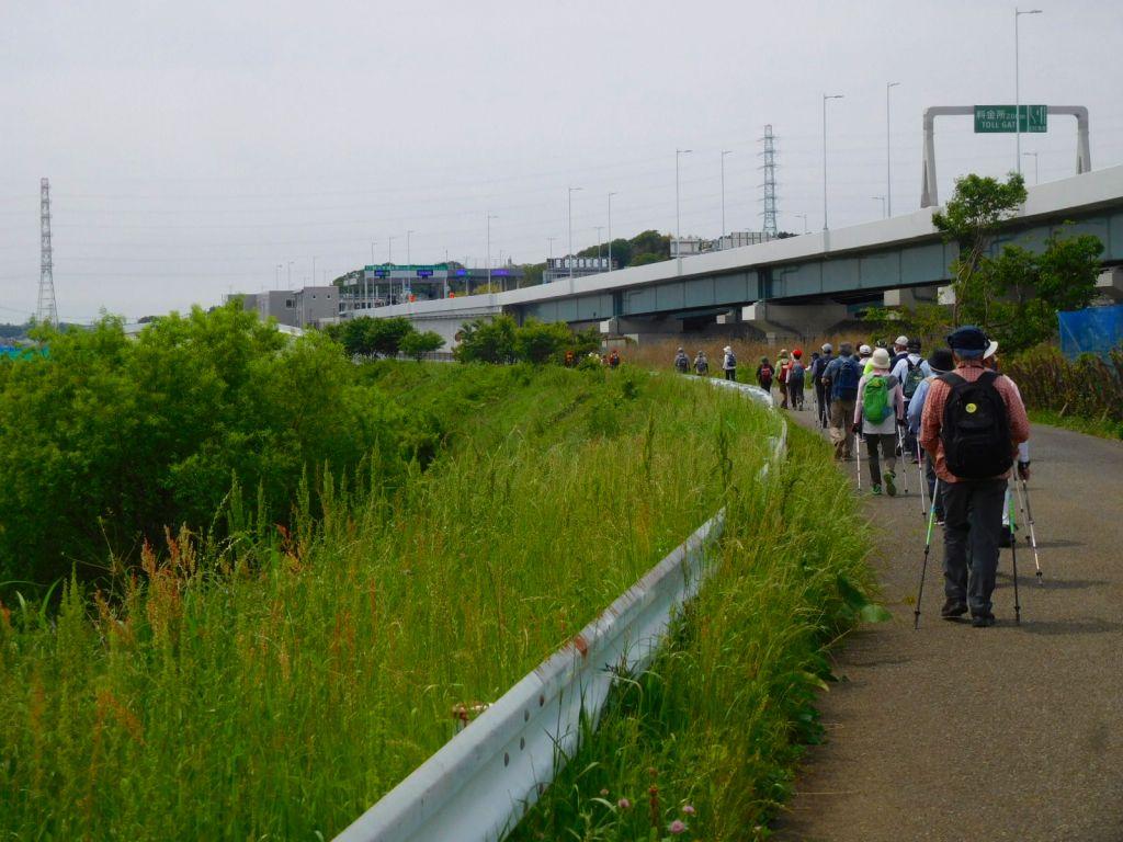 鶴見川沿いを下って行きます