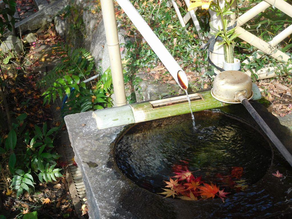 この手水鉢にも紅葉の落ち葉が・・・綺麗です