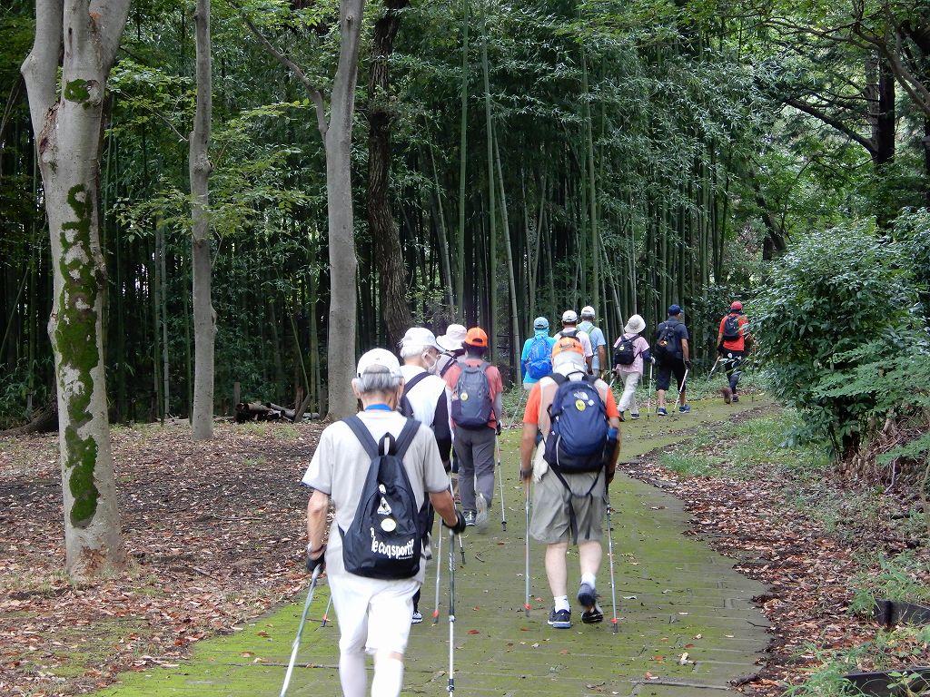 鴨池公園まんまる広場横から竹林へ