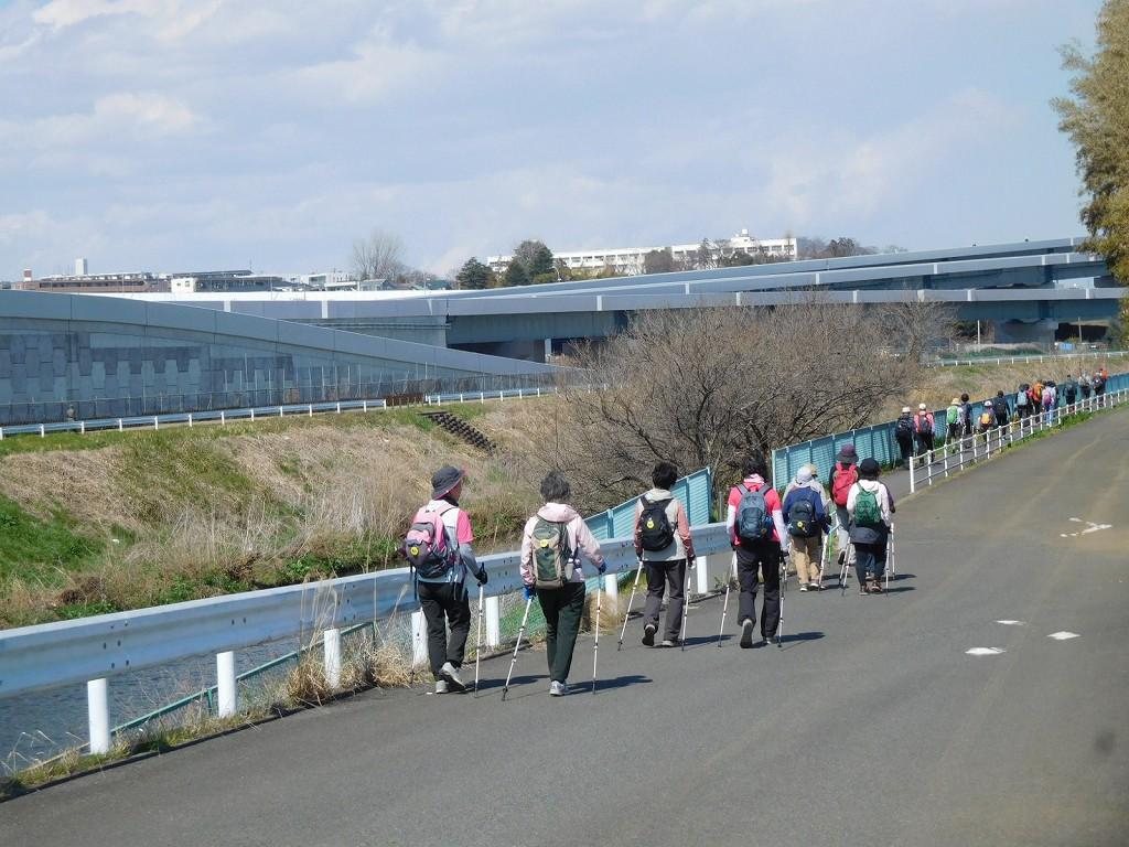 鶴見川沿いを谷本公園目指してウォーキング