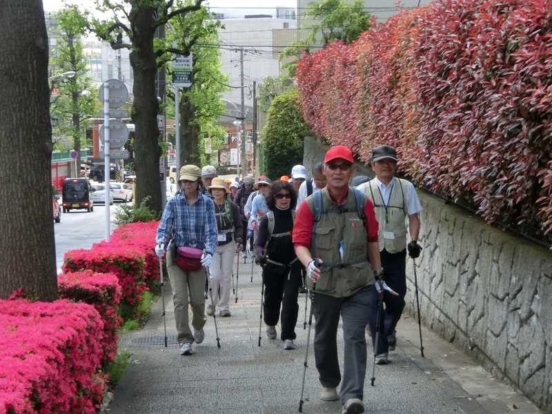 赤田西公園を過ぎて花水木の街路樹通りへ