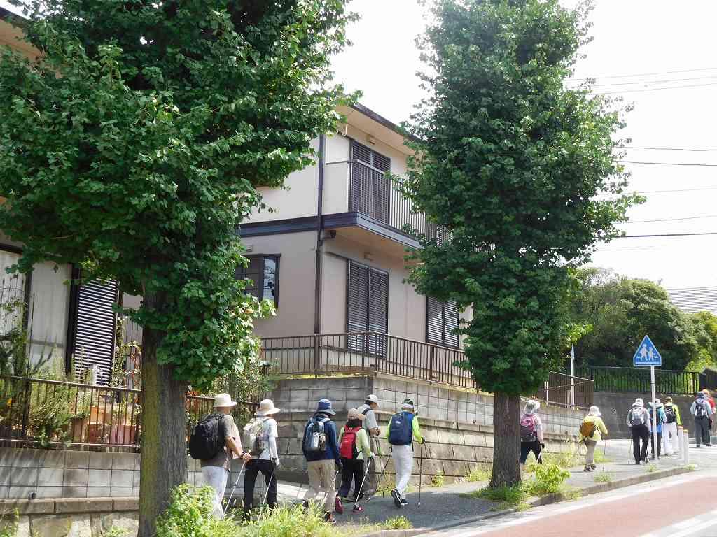 梅ヶ丘の住宅街をウォーキング
