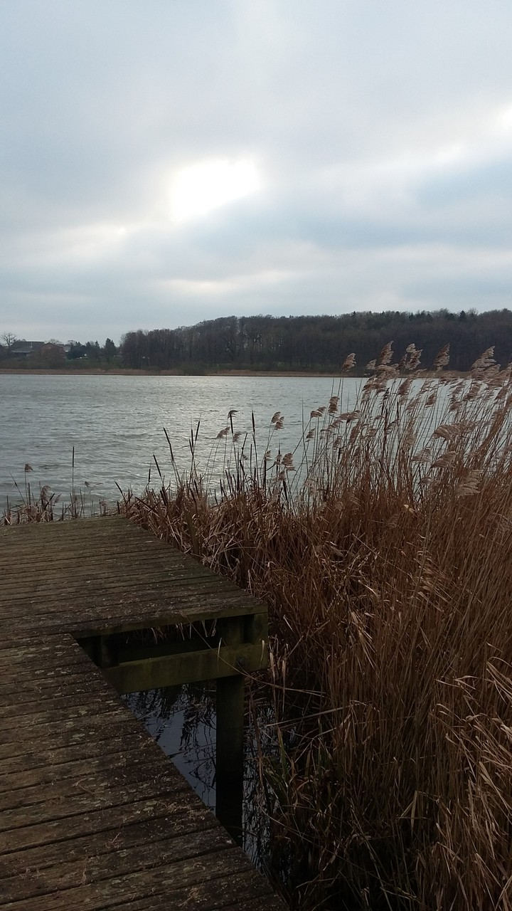 winterspaziergang um den wedendorfer see