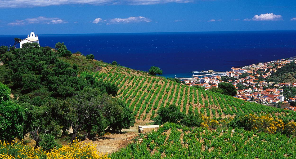 camping route des vins alsace