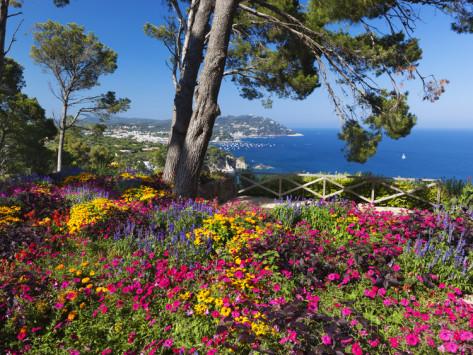 Ботанический сад на Коста Брава, экскурсия в ботанический сад, ботанический сад в Испании