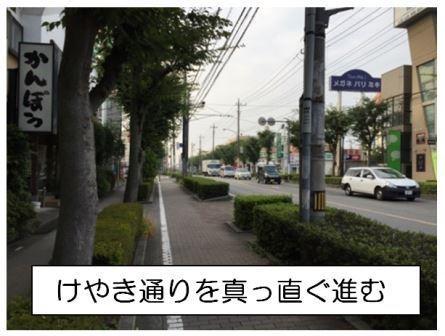 けやき通りを直進