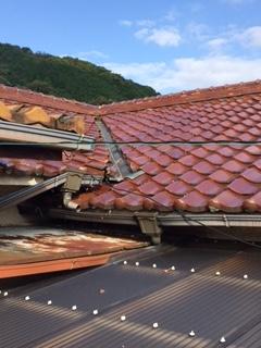 富田林市 瓦 樋 銅板