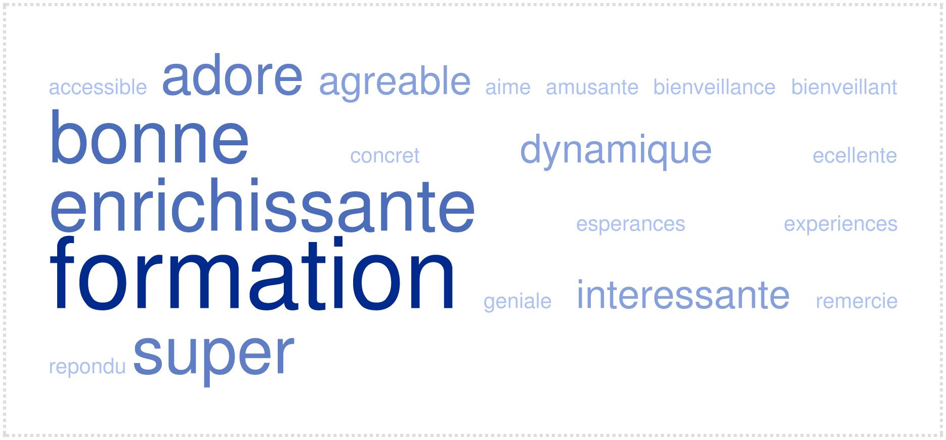 Nuage de mots Formation Pro : La formation selon les stagiaires - Cepsignes Formations -  2017 -