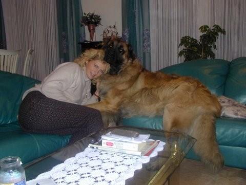 Raudi meine 1. große Hundeliebe, er ist unvergessen!
