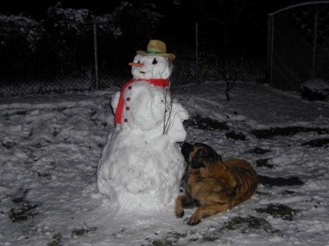Raudi liebte den Schnee und die Kälte, der Schneemann faszinierte ihn