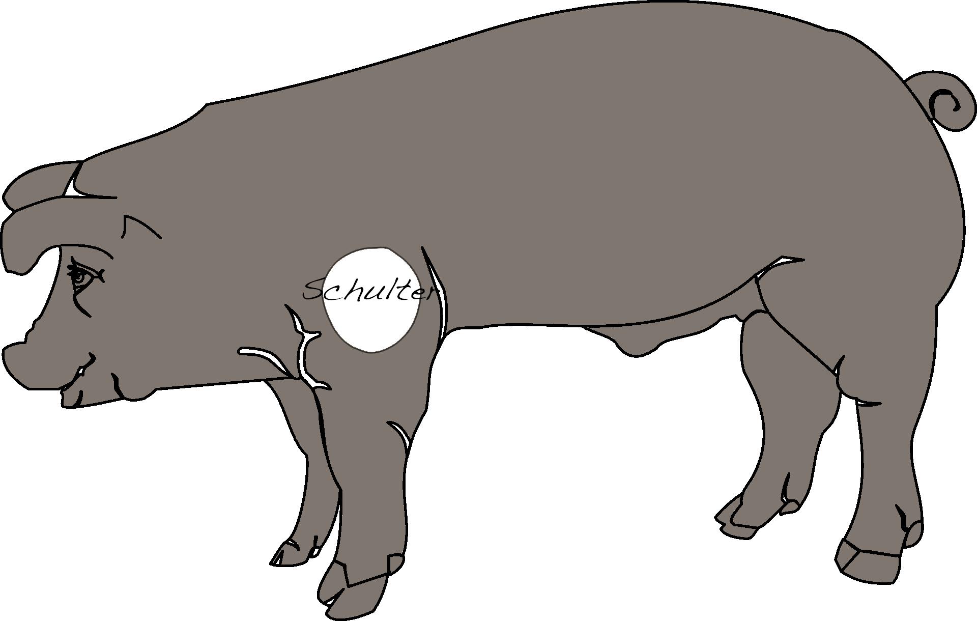 Nose-to-Tail-Küche: Die Schulter (Schäufele)