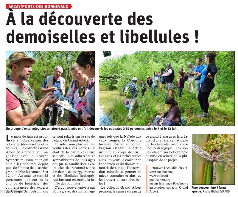 Le Dauphiné Libéré - A la découverte des demoiselles et libellules - 17 juin 2021