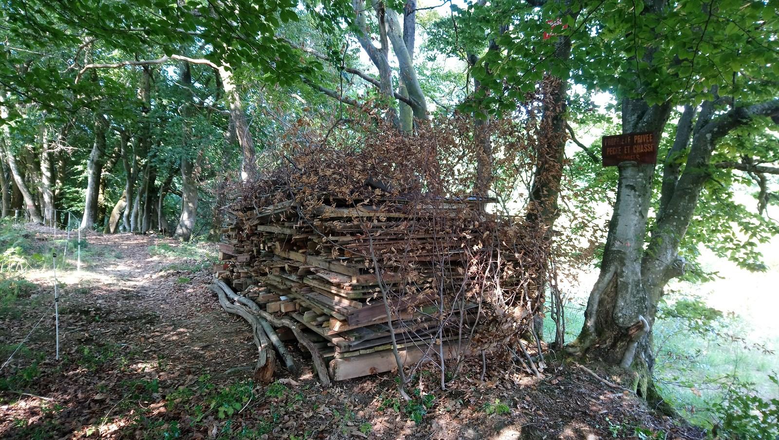 Les tas de bois deviennent des abris pour la petite faune