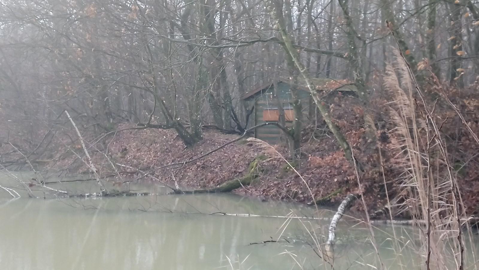 L'observatoire en bordure de la réserve de biodiversité