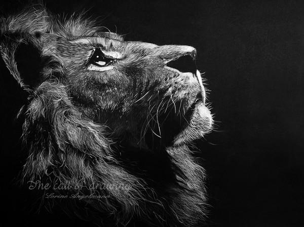portraits animaliers sur commande  de vos compagnons  ou d u0026 39 animaux sauvages