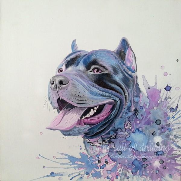 Le pitbull