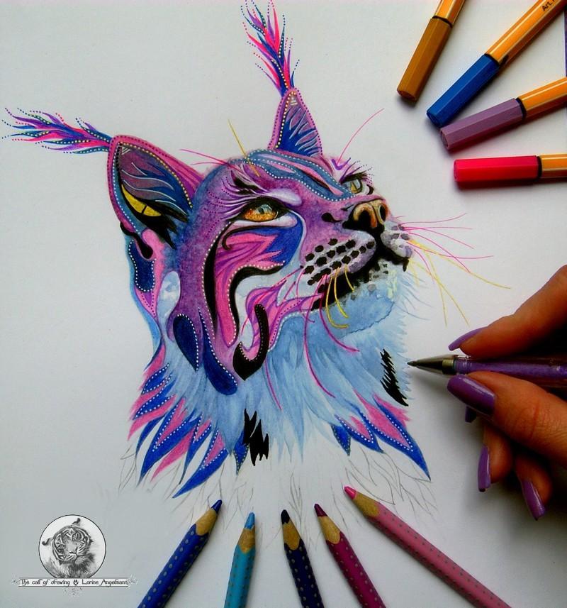 Le lynx progression