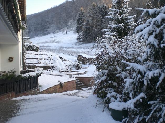 4 Sterne Ferienwohnung Familie Meyerhöfer, Eußerthal, Garten im Winter