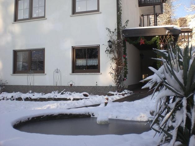 Ferienwohnung Familie Meyerhöfer, nahe Südliche Weinstraße, Teich gefroren