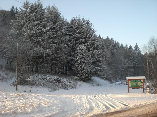 Zufahrt zu Eußerthal im Winter
