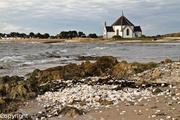 Penvins Morbihan