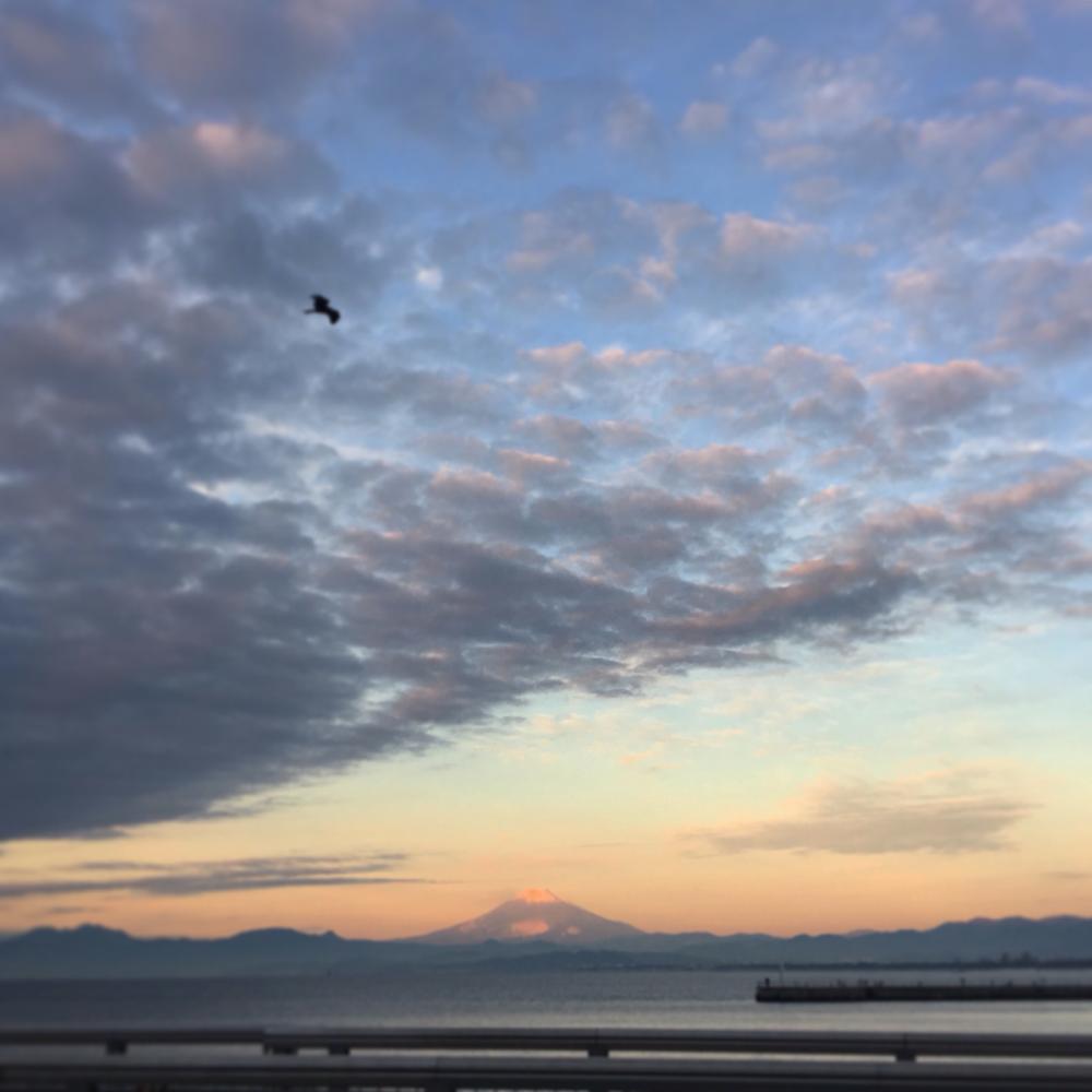 江ノ島大橋から