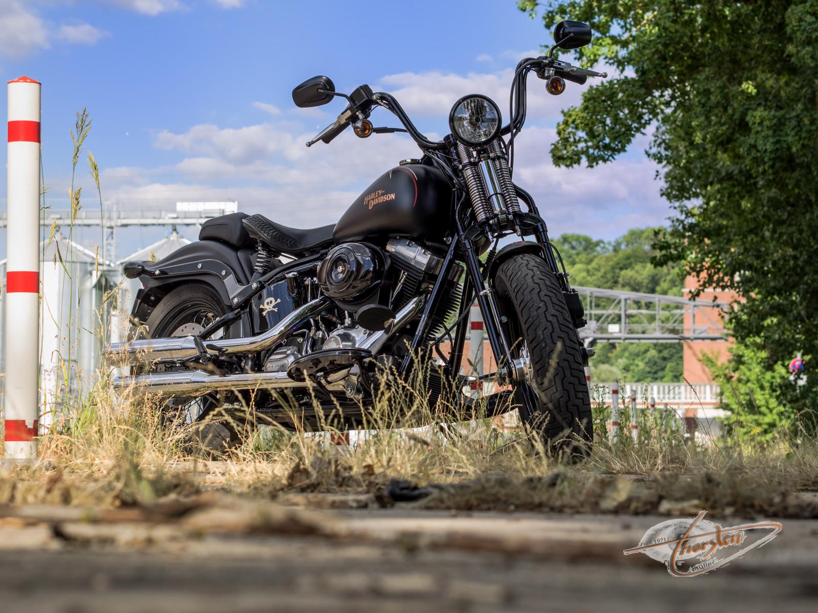 Harley Davidson Cross Bones FLSTSB 2010 black denim