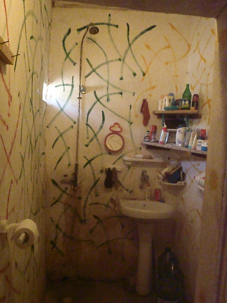 Douche et lavabo n°1