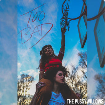The Pussywillows - Too Bad