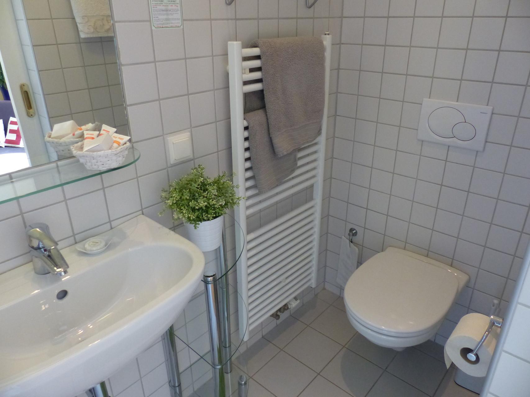 Bad mit Dusche und WC - Zimmer zum Hof