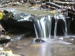 Miniwasserfall im Feuchtgebiet