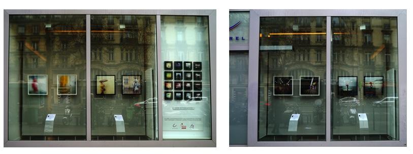 Exposition Gwenaël Bollinger / janvier à juillet 2013
