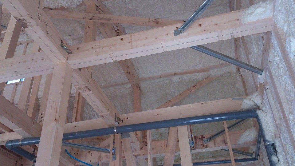 ベイヒバを構造材に使用しての建築