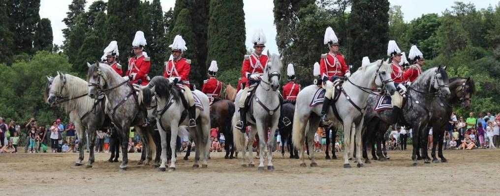 El primer carrusel de esta unidad se presentó en 1910 coincidiendo con la vista del rey Alfonso XIII