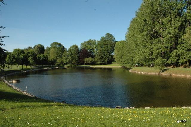 l'étang en face du bivouac