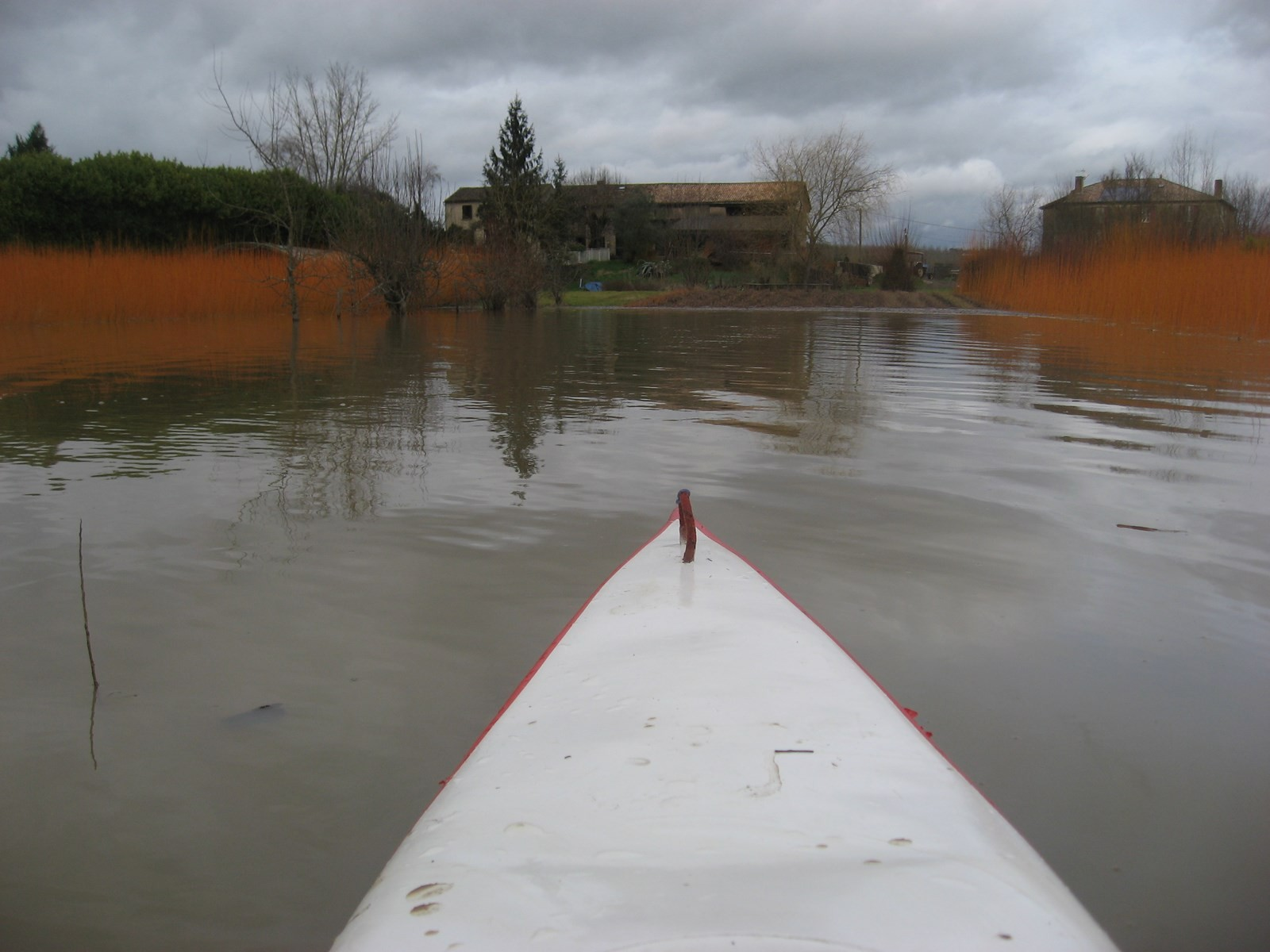 vue depuis le kayac, promenade insolite dans l'oseraie