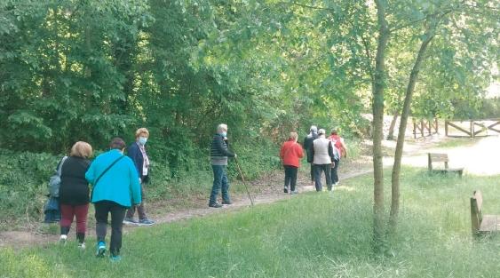 Continúa en Sangüesa el proyecto de paseos saludables