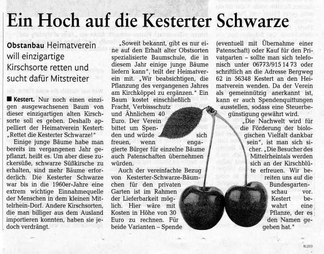 Bericht aus der Rhein-Zeitung vom 15.08.2015